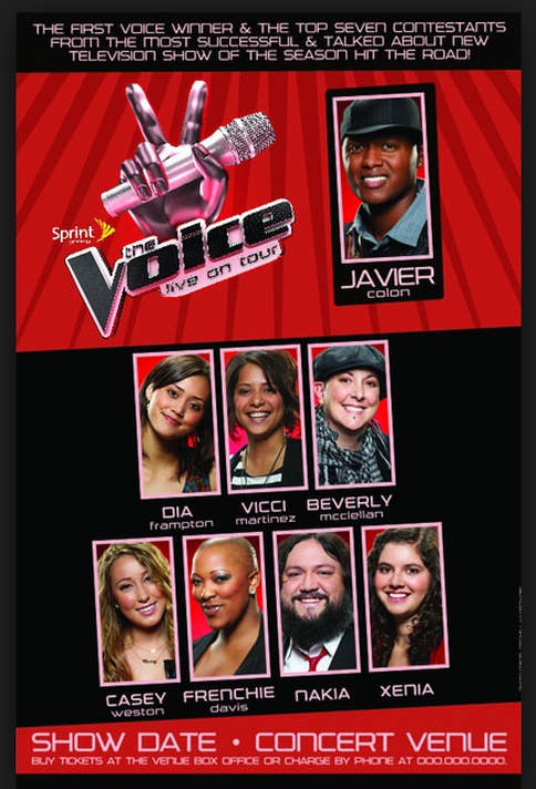 The Voice Tour season one